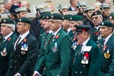 Remembrance Sunday at the Cenotaph 2015: Group A2, Royal Green Jackets Association. Cenotaph, Whitehall, London SW1, London, Greater London, United Kingdom, on 08 November 2015 at 12:07, image #1152