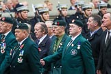 Remembrance Sunday at the Cenotaph 2015: Group A2, Royal Green Jackets Association. Cenotaph, Whitehall, London SW1, London, Greater London, United Kingdom, on 08 November 2015 at 12:07, image #1155