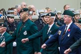 Remembrance Sunday at the Cenotaph 2015: Group A2, Royal Green Jackets Association. Cenotaph, Whitehall, London SW1, London, Greater London, United Kingdom, on 08 November 2015 at 12:08, image #1158