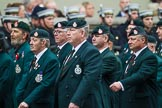 Remembrance Sunday at the Cenotaph 2015: Group A2, Royal Green Jackets Association. Cenotaph, Whitehall, London SW1, London, Greater London, United Kingdom, on 08 November 2015 at 12:08, image #1160