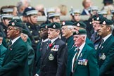 Remembrance Sunday at the Cenotaph 2015: Group A2, Royal Green Jackets Association. Cenotaph, Whitehall, London SW1, London, Greater London, United Kingdom, on 08 November 2015 at 12:08, image #1162