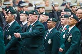 Remembrance Sunday at the Cenotaph 2015: Group A2, Royal Green Jackets Association. Cenotaph, Whitehall, London SW1, London, Greater London, United Kingdom, on 08 November 2015 at 12:08, image #1163