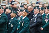 Remembrance Sunday at the Cenotaph 2015: Group A2, Royal Green Jackets Association. Cenotaph, Whitehall, London SW1, London, Greater London, United Kingdom, on 08 November 2015 at 12:08, image #1164
