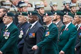 Remembrance Sunday at the Cenotaph 2015: Group A2, Royal Green Jackets Association. Cenotaph, Whitehall, London SW1, London, Greater London, United Kingdom, on 08 November 2015 at 12:08, image #1165