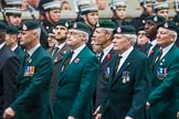Remembrance Sunday at the Cenotaph 2015: Group A2, Royal Green Jackets Association. Cenotaph, Whitehall, London SW1, London, Greater London, United Kingdom, on 08 November 2015 at 12:08, image #1166