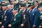 Remembrance Sunday at the Cenotaph 2015: Group A2, Royal Green Jackets Association. Cenotaph, Whitehall, London SW1, London, Greater London, United Kingdom, on 08 November 2015 at 12:08, image #1168