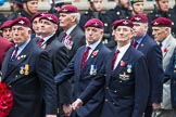 Remembrance Sunday at the Cenotaph 2015: Group A3, Parachute Regimental Association. Cenotaph, Whitehall, London SW1, London, Greater London, United Kingdom, on 08 November 2015 at 12:08, image #1187