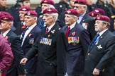 Remembrance Sunday at the Cenotaph 2015: Group A3, Parachute Regimental Association. Cenotaph, Whitehall, London SW1, London, Greater London, United Kingdom, on 08 November 2015 at 12:08, image #1193