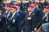 Remembrance Sunday at the Cenotaph 2015: Group A3, Parachute Regimental Association. Cenotaph, Whitehall, London SW1, London, Greater London, United Kingdom, on 08 November 2015 at 12:09, image #1194