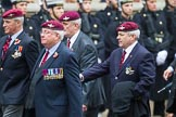 Remembrance Sunday at the Cenotaph 2015: Group A3, Parachute Regimental Association. Cenotaph, Whitehall, London SW1, London, Greater London, United Kingdom, on 08 November 2015 at 12:09, image #1196