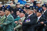 Remembrance Sunday at the Cenotaph 2015: Group A8, Queen's Own Highlanders Regimental Association. Cenotaph, Whitehall, London SW1, London, Greater London, United Kingdom, on 08 November 2015 at 12:10, image #1237