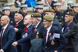 Remembrance Sunday at the Cenotaph 2015: Group A10, Grenadier Guards Association. Cenotaph, Whitehall, London SW1, London, Greater London, United Kingdom, on 08 November 2015 at 12:10, image #1253