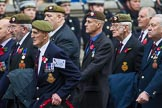 Remembrance Sunday at the Cenotaph 2015: Group A10, Grenadier Guards Association. Cenotaph, Whitehall, London SW1, London, Greater London, United Kingdom, on 08 November 2015 at 12:10, image #1254