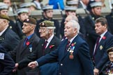 Remembrance Sunday at the Cenotaph 2015: Group A10, Grenadier Guards Association. Cenotaph, Whitehall, London SW1, London, Greater London, United Kingdom, on 08 November 2015 at 12:10, image #1255