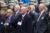 Remembrance Sunday at the Cenotaph 2015: Group A11, Coldstream Guards Association. Cenotaph, Whitehall, London SW1, London, Greater London, United Kingdom, on 08 November 2015 at 12:10, image #1258