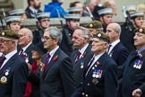 Remembrance Sunday at the Cenotaph 2015: Group A11, Coldstream Guards Association. Cenotaph, Whitehall, London SW1, London, Greater London, United Kingdom, on 08 November 2015 at 12:10, image #1260