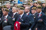 Remembrance Sunday at the Cenotaph 2015: v. Cenotaph, Whitehall, London SW1, London, Greater London, United Kingdom, on 08 November 2015 at 12:11, image #1267