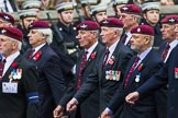 Remembrance Sunday at the Cenotaph 2015: Group A13, Guards Parachute Association. Cenotaph, Whitehall, London SW1, London, Greater London, United Kingdom, on 08 November 2015 at 12:11, image #1275