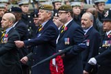 Remembrance Sunday at the Cenotaph 2015: Group A14, 4 Company Association (Parachute Regiment). Cenotaph, Whitehall, London SW1, London, Greater London, United Kingdom, on 08 November 2015 at 12:11, image #1296