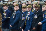 Remembrance Sunday at the Cenotaph 2015: Group A15, Princess of Wales's Royal Regiment. Cenotaph, Whitehall, London SW1, London, Greater London, United Kingdom, on 08 November 2015 at 12:11, image #1308