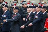 Remembrance Sunday at the Cenotaph 2015: Group A20, Royal Northumberland Fusiliers. Cenotaph, Whitehall, London SW1, London, Greater London, United Kingdom, on 08 November 2015 at 12:12, image #1324