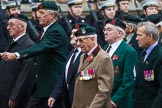Remembrance Sunday at the Cenotaph 2015: Group A32, King's Royal Rifle Corps Association. Cenotaph, Whitehall, London SW1, London, Greater London, United Kingdom, on 08 November 2015 at 12:13, image #1400