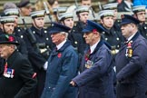 Remembrance Sunday at the Cenotaph 2015: Group M1, Transport for London. Cenotaph, Whitehall, London SW1, London, Greater London, United Kingdom, on 08 November 2015 at 12:14, image #1413
