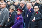Remembrance Sunday at the Cenotaph 2015: Group M5, Evacuees Reunion Association. Cenotaph, Whitehall, London SW1, London, Greater London, United Kingdom, on 08 November 2015 at 12:15, image #1450