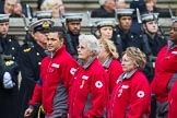 Remembrance Sunday at the Cenotaph 2015: Group M16, British Red Cross. Cenotaph, Whitehall, London SW1, London, Greater London, United Kingdom, on 08 November 2015 at 12:16, image #1512