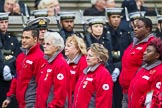 Remembrance Sunday at the Cenotaph 2015: Group M16, British Red Cross. Cenotaph, Whitehall, London SW1, London, Greater London, United Kingdom, on 08 November 2015 at 12:16, image #1513