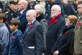 Remembrance Sunday at the Cenotaph 2015: Group M23, Civilians Representing Families. Cenotaph, Whitehall, London SW1, London, Greater London, United Kingdom, on 08 November 2015 at 12:17, image #1562