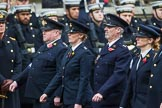 Remembrance Sunday at the Cenotaph 2015: Group M25, Royal Society for the Prevention of Cruelty to Animals. Cenotaph, Whitehall, London SW1, London, Greater London, United Kingdom, on 08 November 2015 at 12:17, image #1594