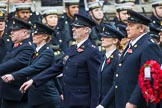 Remembrance Sunday at the Cenotaph 2015: Group M25, Royal Society for the Prevention of Cruelty to Animals. Cenotaph, Whitehall, London SW1, London, Greater London, United Kingdom, on 08 November 2015 at 12:17, image #1595