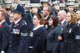 Remembrance Sunday at the Cenotaph 2015: Group M33, Ministry of Defence. Cenotaph, Whitehall, London SW1, London, Greater London, United Kingdom, on 08 November 2015 at 12:18, image #1630