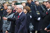 Remembrance Sunday at the Cenotaph 2015: Group M34, TRBL Non Ex-Service Members. Cenotaph, Whitehall, London SW1, London, Greater London, United Kingdom, on 08 November 2015 at 12:18, image #1637