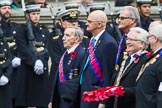 Remembrance Sunday at the Cenotaph 2015: Group M39, Royal Antediluvian Order of Buffaloes. Cenotaph, Whitehall, London SW1, London, Greater London, United Kingdom, on 08 November 2015 at 12:19, image #1659