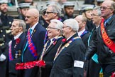 Remembrance Sunday at the Cenotaph 2015: Group M39, Royal Antediluvian Order of Buffaloes. Cenotaph, Whitehall, London SW1, London, Greater London, United Kingdom, on 08 November 2015 at 12:19, image #1660