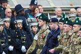 Remembrance Sunday at the Cenotaph 2015: Group M46, Sea Cadet Corps. Cenotaph, Whitehall, London SW1, London, Greater London, United Kingdom, on 08 November 2015 at 12:20, image #1691