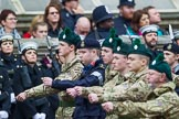 Remembrance Sunday at the Cenotaph 2015: Group M46, Sea Cadet Corps. Cenotaph, Whitehall, London SW1, London, Greater London, United Kingdom, on 08 November 2015 at 12:20, image #1692