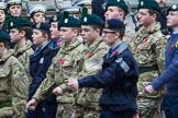 Remembrance Sunday at the Cenotaph 2015: Group M46, Sea Cadet Corps. Cenotaph, Whitehall, London SW1, London, Greater London, United Kingdom, on 08 November 2015 at 12:20, image #1695