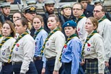 Remembrance Sunday at the Cenotaph 2015: Group M50, Scout Association. Cenotaph, Whitehall, London SW1, London, Greater London, United Kingdom, on 08 November 2015 at 12:21, image #1726