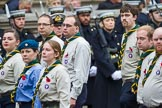 Remembrance Sunday at the Cenotaph 2015: Group M50, Scout Association. Cenotaph, Whitehall, London SW1, London, Greater London, United Kingdom, on 08 November 2015 at 12:21, image #1727