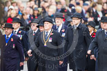 Remembrance Sunday at the Cenotaph 2015: The first column of veterans marching along Whitehall. Image #25, 08 November 2015 10:16 Whitehall, London, UK