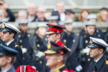 Remembrance Sunday at the Cenotaph 2015: Captain  Edward  Lane  Fox , Equerry to Prince Harry. Image #166, 08 November 2015 11:03 Whitehall, London, UK