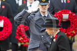 Remembrance Sunday at the Cenotaph 2015: The Equerry to HM The Queen, Wing Commander Sam Fletcher, RAF, after handing over the wreath. Image #171, 08 November 2015 11:03 Whitehall, London, UK