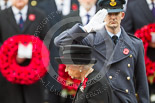 Remembrance Sunday at the Cenotaph 2015: The Equerry to HM The Queen, Wing Commander Sam Fletcher, RAF, saluting after handing over the wreath. Image #172, 08 November 2015 11:03 Whitehall, London, UK