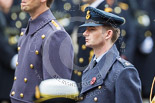 Remembrance Sunday at the Cenotaph 2015: Wing Commander Sam Fletcher, RAF, Equerry to HM The Queen. Image #283, 08 November 2015 11:14 Whitehall, London, UK