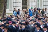 Remembrance Sunday at the Cenotaph 2015: Spectators on the northern side of Whitehall watching the veterans waiting for the begin of the March Past. Image #348, 08 November 2015 11:28 Whitehall, London, UK