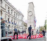 Remembrance Sunday at the Cenotaph 2015: The wreaths at the Cenotaph are re-arranged before the barriers go up and the public is allowed to get close. Image #374, 08 November 2015 12:41 Whitehall, London, UK