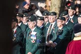March Past, Remembrance Sunday at the Cenotaph 2016: A01 1LI Association. Cenotaph, Whitehall, London SW1, London, Greater London, United Kingdom, on 13 November 2016 at 12:37, image #9